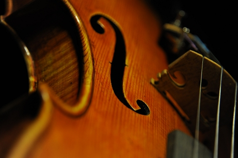 Labeled Riccardo Antoniazzi Violin
